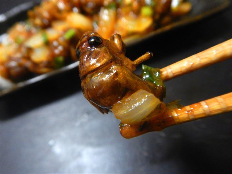 セミとりゼミ!とる三つのコツとうまいセミ料理【昆虫注意】