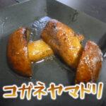 コガネヤマドリは食毒不明らしいのですが私は食べています
