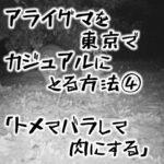 アライグマを東京でカジュアルにとる方法④ トメてバラして肉にする